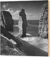 Sea Stacks At Castle Sinclair Girnigoe Wood Print