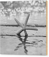 Sea Star Bw Wood Print