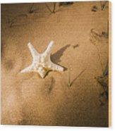 Sea Star Scene Wood Print