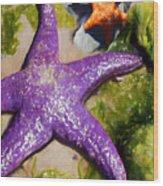 Sea Stars Wood Print