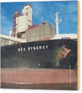 Sea Synergy Hull Wood Print