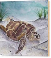 Sea Turtle 2 Wood Print
