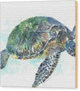 Sea Turtle #20 Wood Print