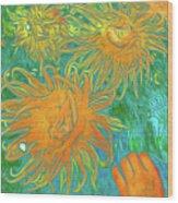 Sea Urchin 10 Wood Print