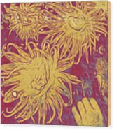 Sea Urchin 6 Wood Print