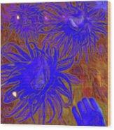 Sea Urchin 9 Wood Print