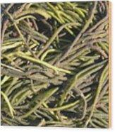 Sea Weed Cluster Wood Print