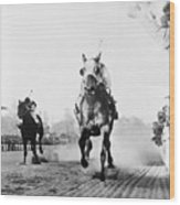 Seabiscuit Acrossing The Finish Line Wood Print