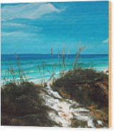 Seagrove Beach Florida Wood Print