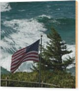 Seagull And Flag Wood Print