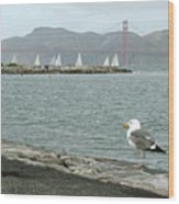 Seagull And Golden Gate Bridge Wood Print