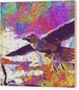 Seagull Birds Flight Wings Freedom  Wood Print