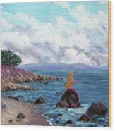 Seagull Cove Wood Print