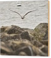 Seagull Flying Into Ocean Jetty Wood Print