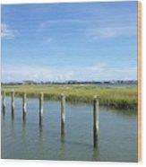 Seagull Line Wood Print