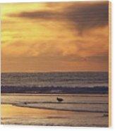 Seagull On A Sandbar Wood Print