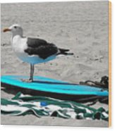 Seagull On A Surfboard Wood Print