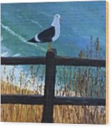 Seagull On The Fence Wood Print