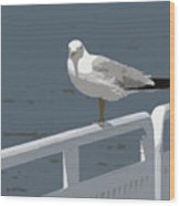 Seagull On The Rail Wood Print