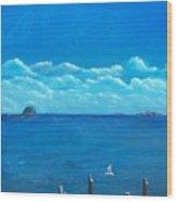 Seagull Seascape IIi Wood Print