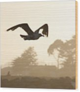 Seagull Sihlouette Wood Print