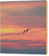 Seagull Silhouette Wood Print