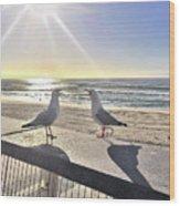 Seagull Sonnet  Wood Print