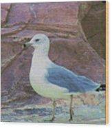 Seagull Strut Wood Print
