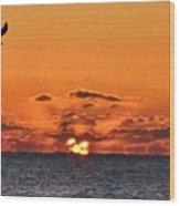 Seagull Sunrise Wood Print
