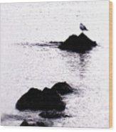 Seagull Waiting Wood Print