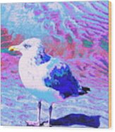 Cool And Colorful Gull Wood Print