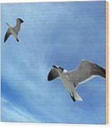 Seagulls # 6 Wood Print