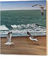 Seagulls 2 Wood Print