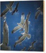 Seagulls Above Wood Print