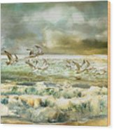 Seagulls At Sea Wood Print