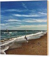 Seagulls At The Beach Wood Print