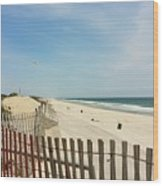 Seagulls Beach Wood Print