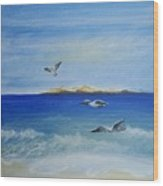 Seagulls By The Sea Wood Print