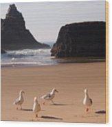 Seagull's Folly Wood Print