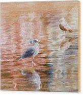 Seagulls - Impressions Wood Print