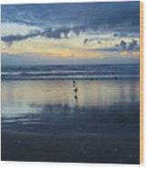 Seagulls On Beach At Sunset Wood Print