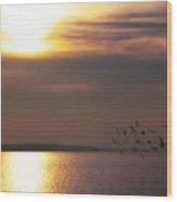 Seagulls On The Chesapeake Wood Print