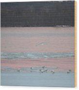 Seagulls On The Potomac Wood Print