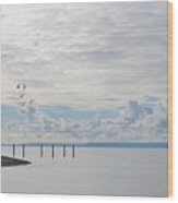 Seagulls Over Admiralty Inlet 2 Wood Print