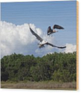 Seagulls Over Marsh Wood Print