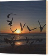 Seagulls Silhouettes Wood Print