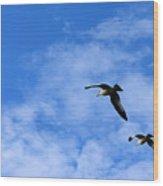 Seagulls2 Wood Print