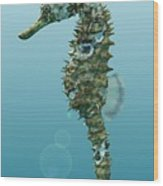 Seahorse 3d Render Wood Print