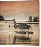 Seair Beaver 1 Wood Print