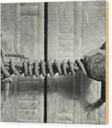 Seal Of Tutankhamun's Tomb  Wood Print